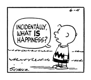 Incidentally, what IS happiness?